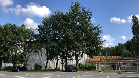 Sporthalle der Märkischen Schule